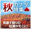 秋カナダ旅行特集
