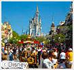 海外ディズニーパークの旅特集