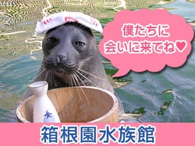 箱根水族館