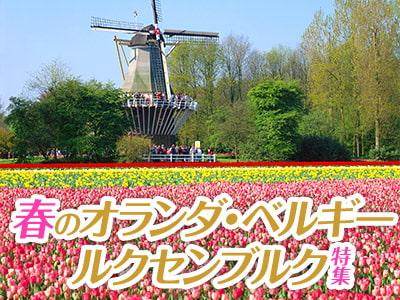 春のオランダ・ベルギー旅行特集