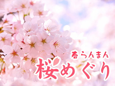 春らんまん 桜めぐり