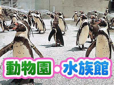 動物園・水族館への旅