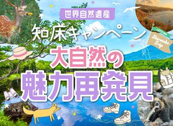 上野砂由紀