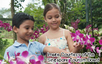 シンガポール植物園(国立ラン園)