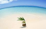 サイパンのビーチリゾート