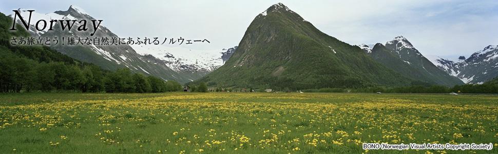 ノルウェー1