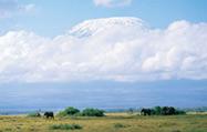 アンボセリ国立公園
