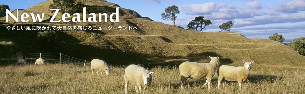 ニュージーランド3