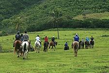 【関空発】ハワイアン航空で行く ハワイ島 5・6日【先どりスーパーセール】
