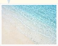 きれいな海を満喫したい