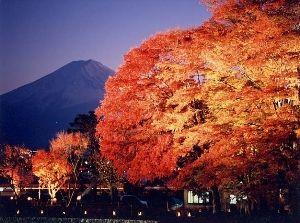 2016富士河口湖紅葉まつり