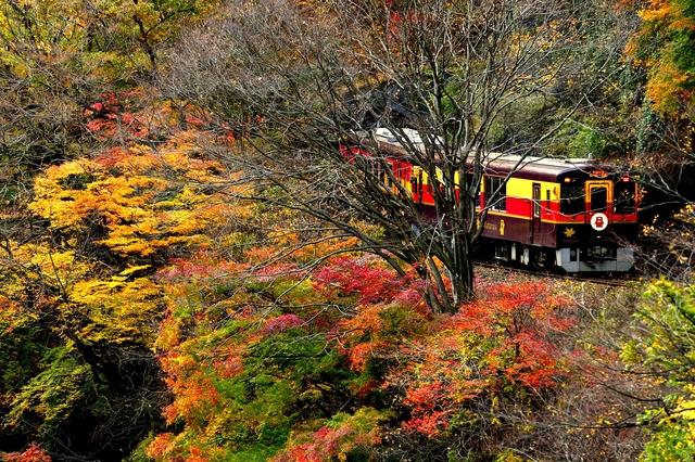 http://www.nta.co.jp/kokunai/season/koyo/images/kanto/img_13.jpg