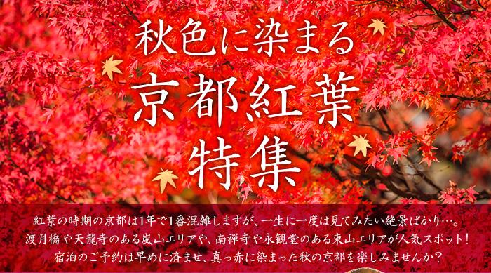 秋色に染まる京都紅葉特集