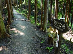 世界遺産熊野古道「中辺路」ウォーク 第2回