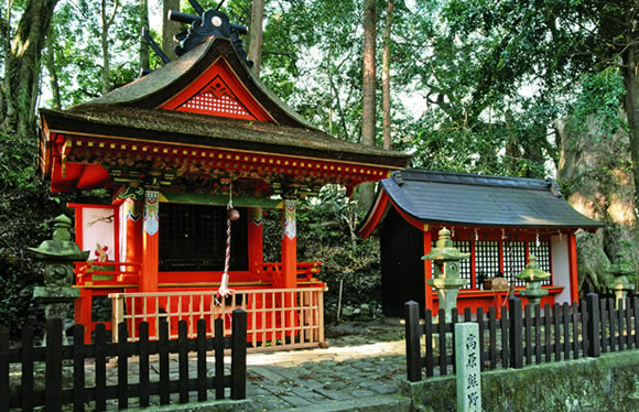 世界遺産熊野古道「中辺路」ウォーク 第1回