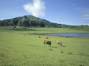 絶景の熱気球体験「行って楽しんで応援しよう 熊本・大分キャンペーン」緑いっぱい雄大な阿蘇の自然と別府地獄めぐり 3日間