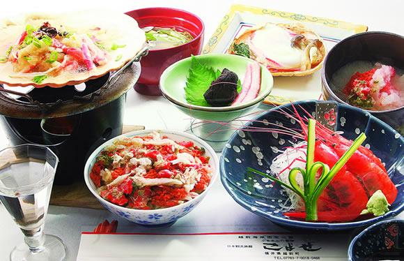 50日間だけしか食べられない!「開高丼(R)」と敦賀で海鮮ショッピング