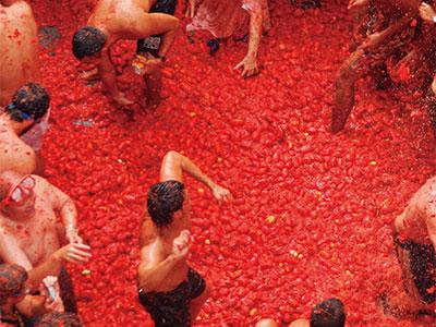 【成田発】「トマト祭り」マドリッド6日
