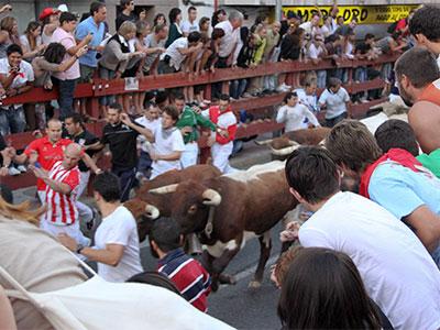 【成田発羽田着】「パンプローナの牛追い祭り」を観覧!聖地ルルドからサンチャゴ・デ・コンポステーラへ巡礼の道を行く9日