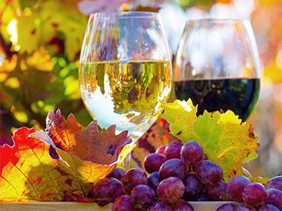 【関空発】ブルゴーニュ最大の「ボーヌのワイン祭り」へ行こう!