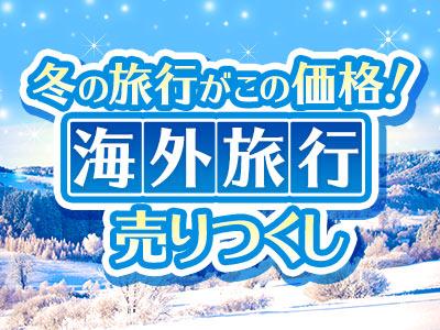 \売りつくしセール!/冬の海外旅行がお得!