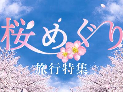 そろそろ色づき始め?日本全国紅葉旅特集