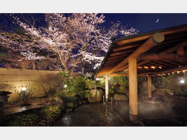 夜桜 露天風呂