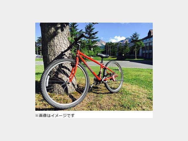 レンタサイクル(有料・一例)