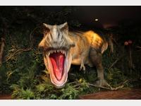 ロビーの恐竜