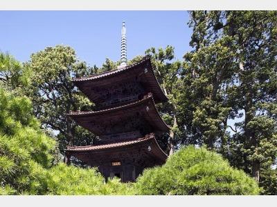 敷地内庭園 三重塔