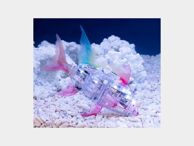 魚ロボット「アイロ」