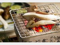 【本館】松茸料理の一例