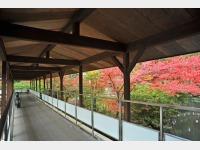 秋の渡り廊下