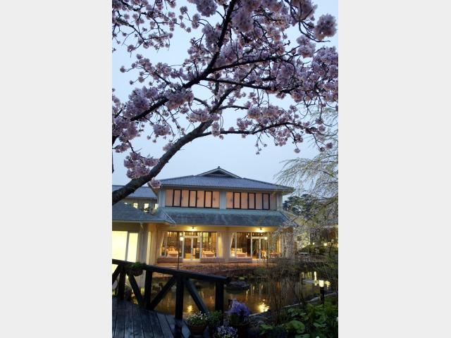 ガーデン 桜