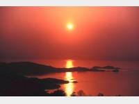 オリビアンタ夕陽