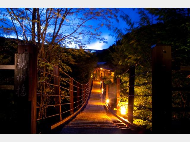 観樹橋(吊り橋)