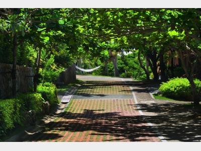 イメージ(遊歩道)
