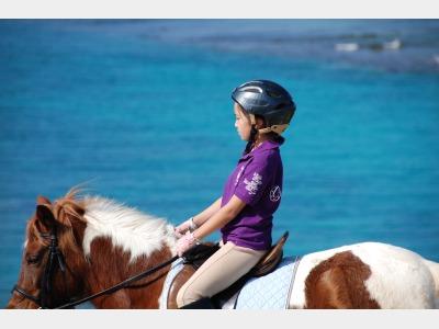 乗馬体験イメージ