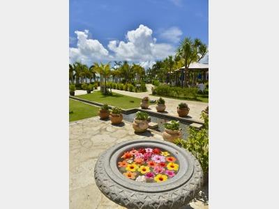 【ホテル中庭】色とりどりの花々をお楽しみいただけるガーデン