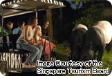 【名古屋発】シンガポール航空利用 シンガポール 観光付き【春~秋本番!満喫】
