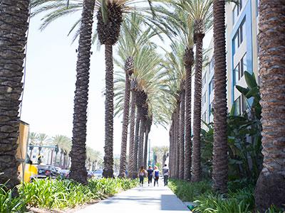【関空発】日本航空で行くロサンゼルス/アナハイム5・6・7日【先どり!】
