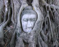 【関空発】タイ国際航空利用!バンコク4・5日 バンコク市内とアユタヤの観光付き【お買得】
