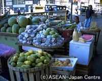 【関空発】フィリピン航空直行便で行くセブ島3・4・5日 送迎付き・朝食付き【先どり!】