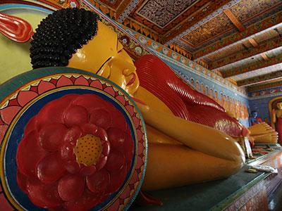 【関空発】コンパクトスリランカ5日 4つの世界遺産観光付き!【絶景】