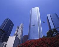 【関空発】日本航空直行便で行くロサンゼルス5・6・7日【秋~早春の先どり!】
