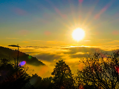 【関空発】チャイナエアラインで行く阿里山の日の出と日月潭の夕景!台湾周遊4日【絶景】