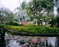 【関空発】ガルーダインドネシア航空直行便で行くバリ島4・5・6日【春~夏の先どり!】