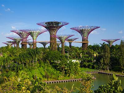 【関空発】シンガポール航空ビジネスクラス午前便で行くシンガポール4・5日【春~夏の盛りだくさん】