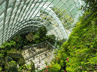 【成田/羽田発】シンガポール航空利用!憧れのマリーナ・ベイ・サンズに泊まる!シンガポール【素敵なリゾート】