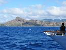 【成田発】往復デルタ航空直行便ビジネスクラス利用ホノルル4・5・6・7日【気ままに楽しむ!ハワイ】